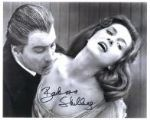 "Barbara Shelley from ""Blood of the Vampire"" HAMMER HORROR Genuine Signed Autograph 10 x 8 COA 5581"
